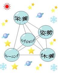 スポーツの五大要素(四面体).jpg