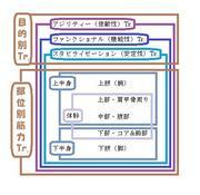 トレーニング分類図.jpg
