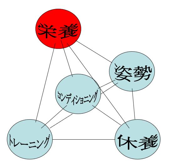 コンディショニングと四大要素との関係(二)
