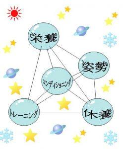 図1.トレーニングの正四面体