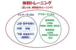 体幹トレーニングの分類・イメージ図.jpg